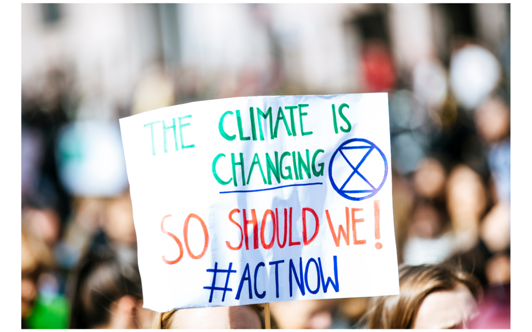 South Africans Should Heed the Warnings in the United Nations' IPCC Report